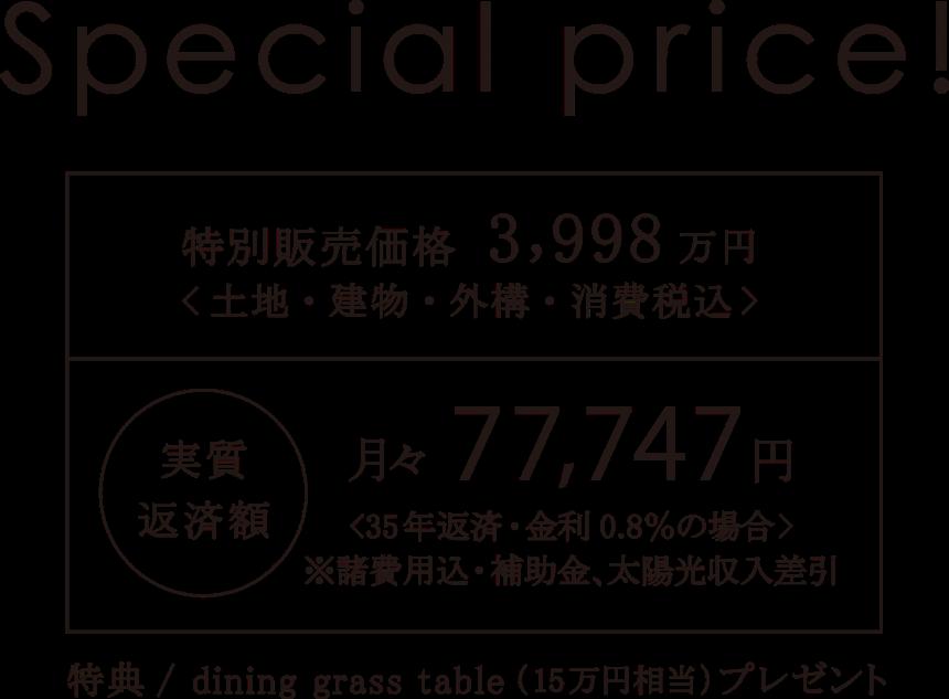 evergreenの価格